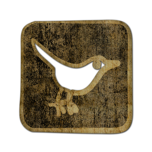 social, square, social network, twitter, bird, sn, animal icon
