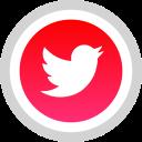 media, logo, social, twitter icon