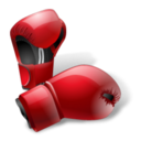 boxing,gloves icon