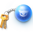 Chain, Key icon