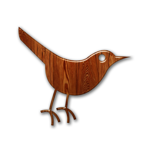 social network, social, animal, bird, sn, twitter icon