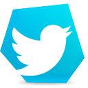 social, tweet, twitter, bird icon
