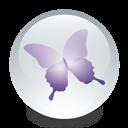 Adobe, Indesign icon