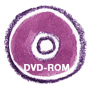 Natsu DVDROM icon