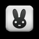 animal,rabbit icon