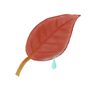leaf, ak icon