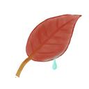 leaf, ak icon