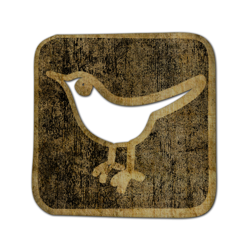 social, sn, twitter, square, animal, bird, social network icon