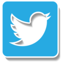 Twitter2 icon