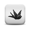 animal,bird icon