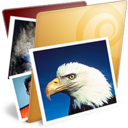 golden,pictures,folder icon