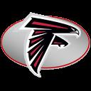Falcons icon