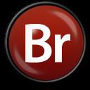Adobe Bridge CS 3 icon