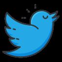 social, media, communication, twitter, network icon