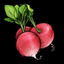radish,fruit,vegetable icon
