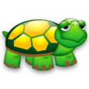 turtle,animal icon