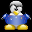 france,penguin,animal icon