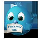 follow, twitter, me icon
