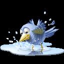tweet, twitter, bird, water, animal, pool icon