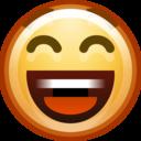 face smile big icon
