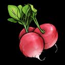 radish, fruit, vegetable icon