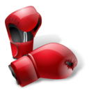 boxing,gloves,box icon