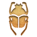 scarab,inserted icon
