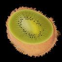 kiwi,fruit icon