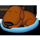 sleeping,old,dog icon