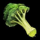 vegetable, fruit, broccoli icon