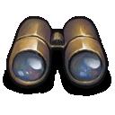 golden,binoculars icon