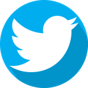 social network, twitter, logo icon