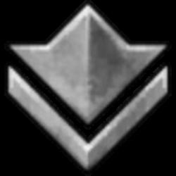 silver icon