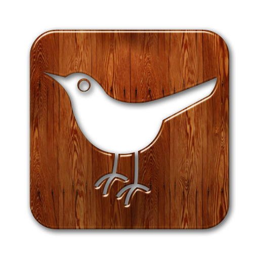 social, twitter, animal, bird, sn, square, social network icon