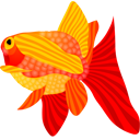fish,animal icon