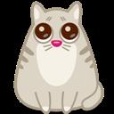 Cat, Eyes icon