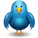 twitter bird front icon