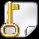 encrypted,file,key icon