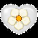 social, media, magnolia icon