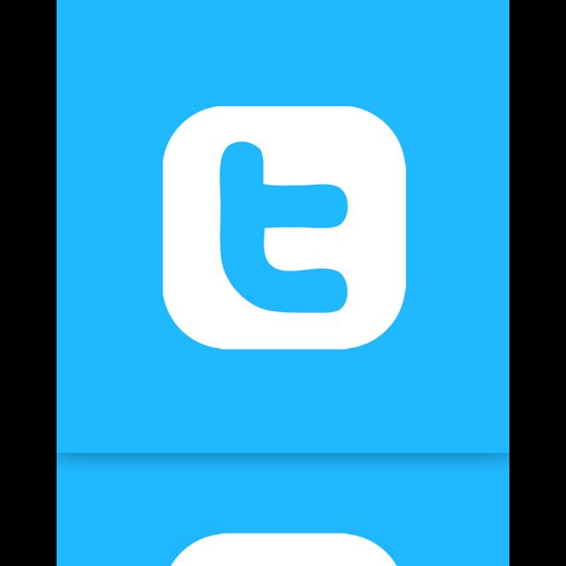 mirror, alt, twitter icon