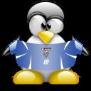serbia,montenegro,penguin icon