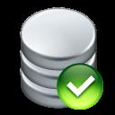 Apply, Data icon