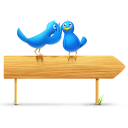social, twitter, and, social network, sn, bird, sign, animal icon