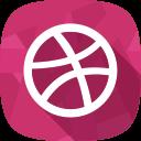 social network, portfolio, dribbble icon