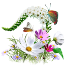 Flowers Wildflowers icon