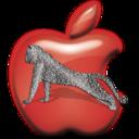 apple,leopard icon