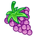 fruit, grape icon