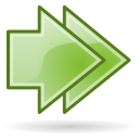 Arrow double right icon