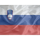 Regular Slovenia icon