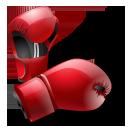 box, sport, boxer, gloves, boxing, sports icon